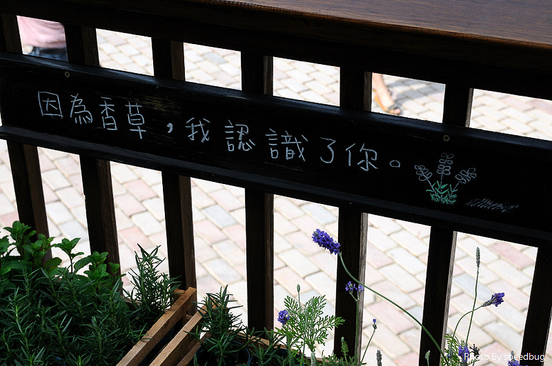 台中TAICHUNG,台中景點
