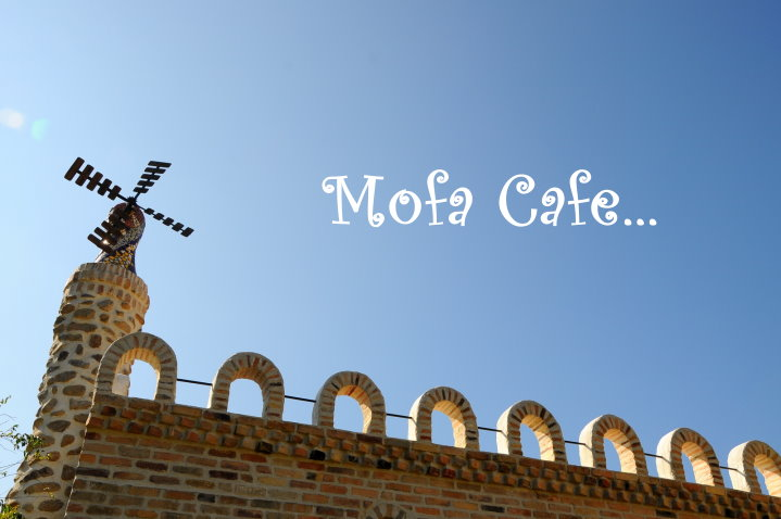 mofacafe,魔法咖啡,mofa,南投景點,南投咖啡