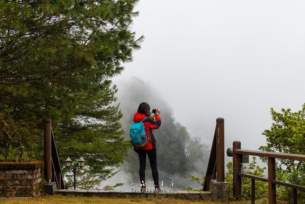 對高岳,對高岳車站,對高岳觀日坪,對高岳觀日坪台,阿里山小火車,祝山車站