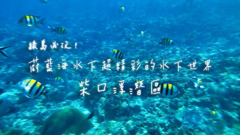 最新推播訊息:綠島柴口浮潛區.蔚藍海水精彩無比的水下世界景觀