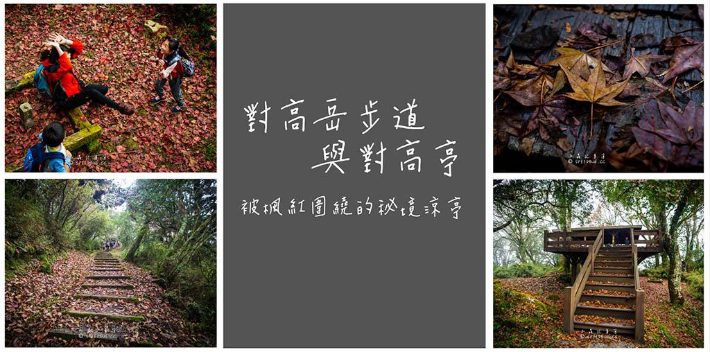 今日熱門文章:嘉義.阿里山|對高岳越嶺步道.被楓紅圍繞的秘境涼亭與步道
