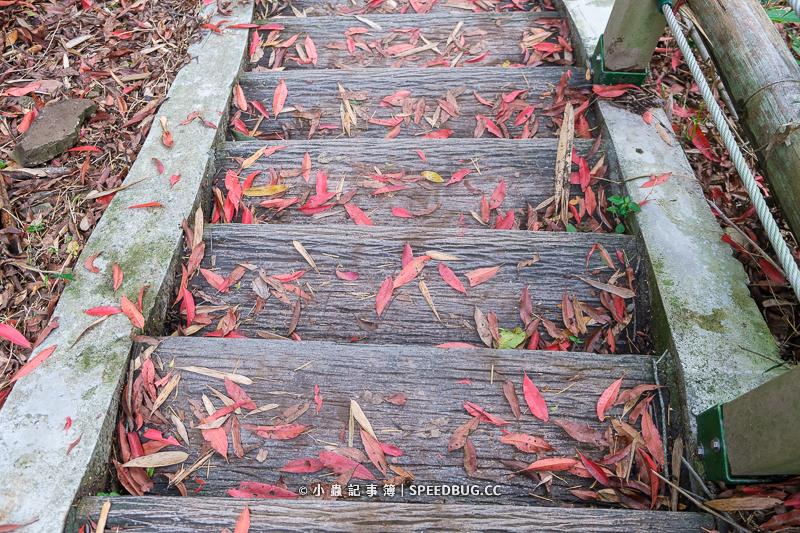 達卡努瓦,那瑪夏,神社,神社遺跡,達卡努瓦神社,日本神社,鳥居,螢火蟲,那瑪夏螢火蟲,鳥居螢火蟲