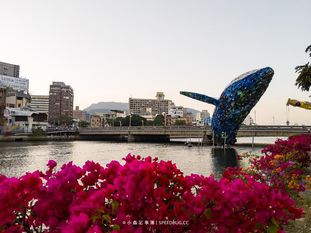 七賢路鯨魚,愛之鯨,高雄KAOHSIUNG,高雄燈會,高雄燈會鯨魚